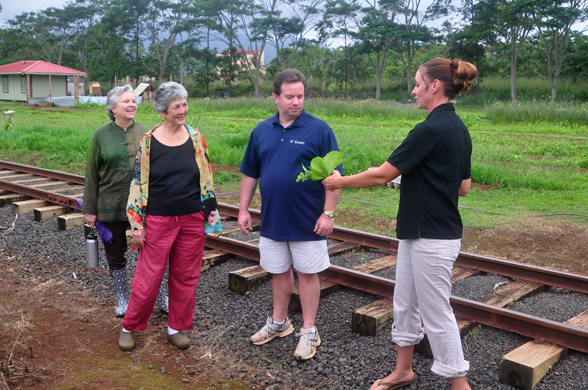 sampling mustard greens on kilohana farm tour - photo by Ray Gordon