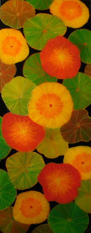 Color Splash by Anna