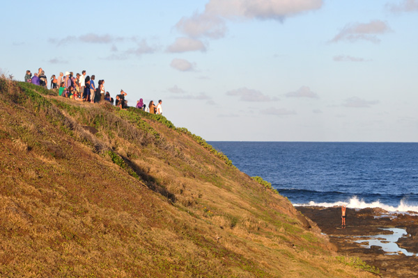 Celebration of the Whales Crowd on the Cliff