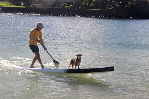paddler photo by ray gordon kauai