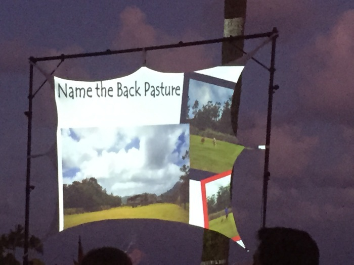 Name the Back Pasture auction item