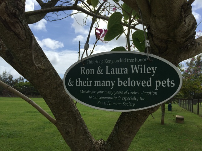Ron and Laura Wiley honored at the Kauai Humane Society for long years of generous support - large dog park