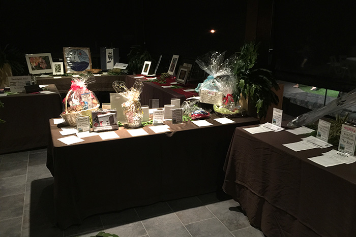 Silent Auction at Paws for Celebration