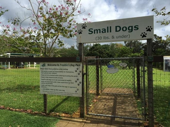 Small Dog Freddie's Park Kauai Humane Society